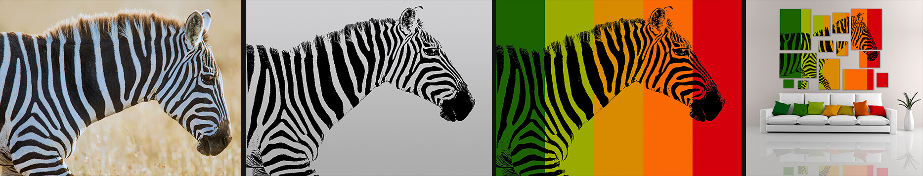 Zebra Photographic Mosaic