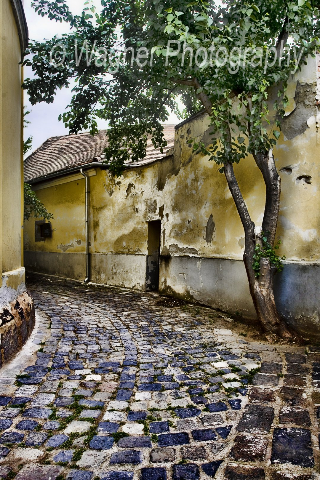 Hungarian Alley
